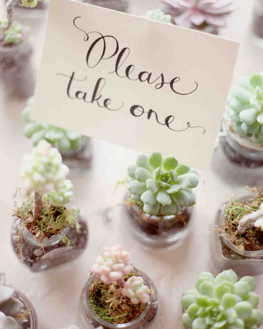 Trending Wedding Favors Simply Fresh Events
